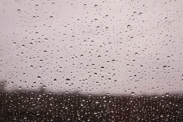 Rain Drops - WM