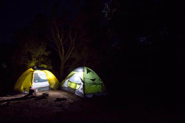 Night Tents - WM - 3-18